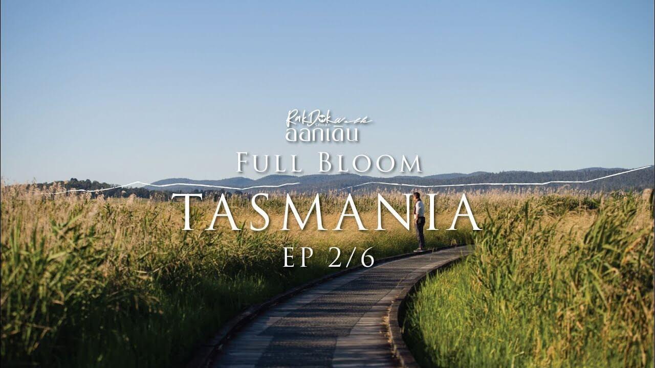 rakdok-walk-tasmania-ep1