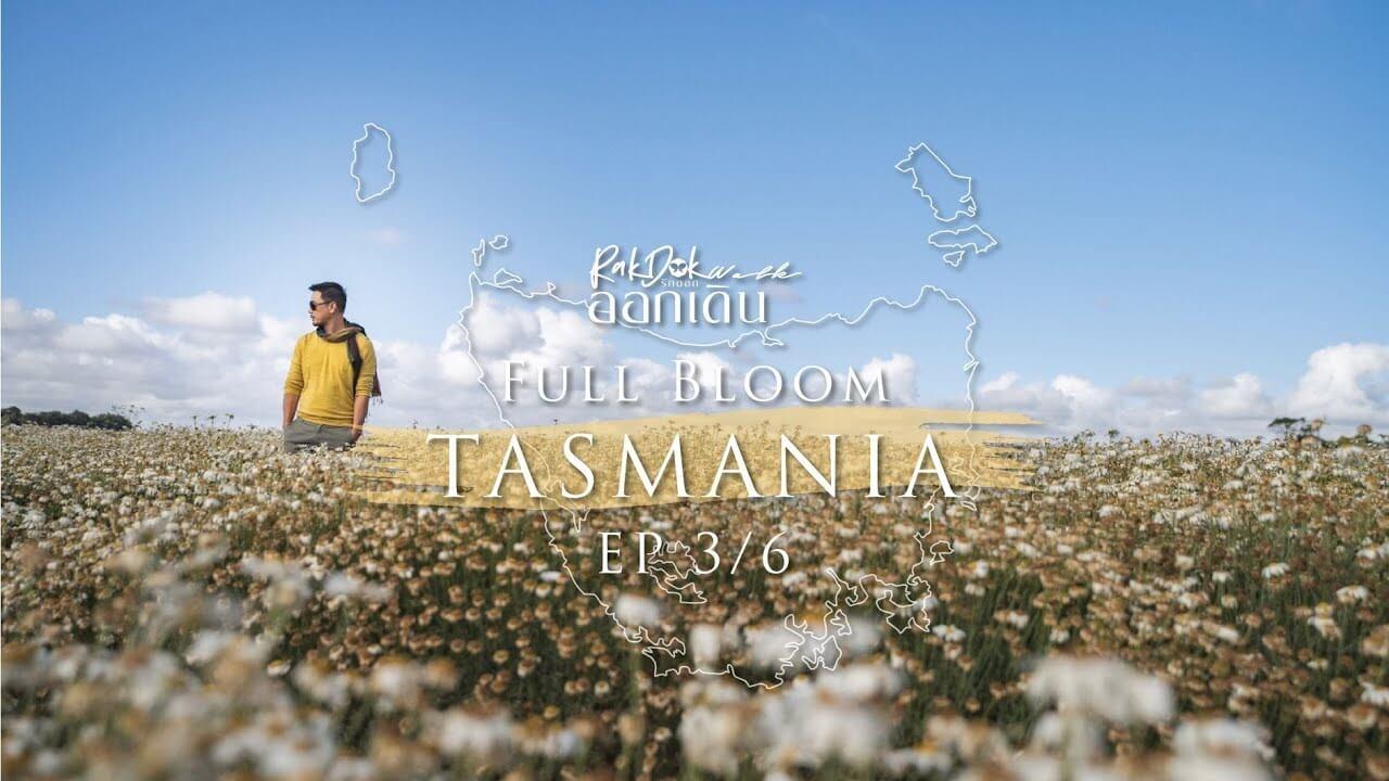 rakdok-walk-tasmania-ep3