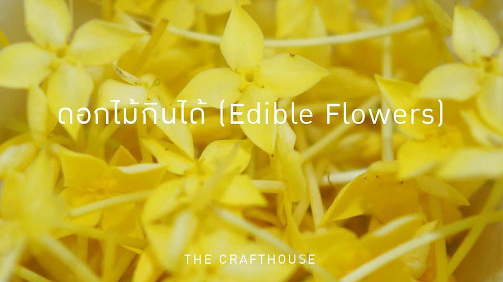 ดอกไม้กินได้ (Edible Flowers)