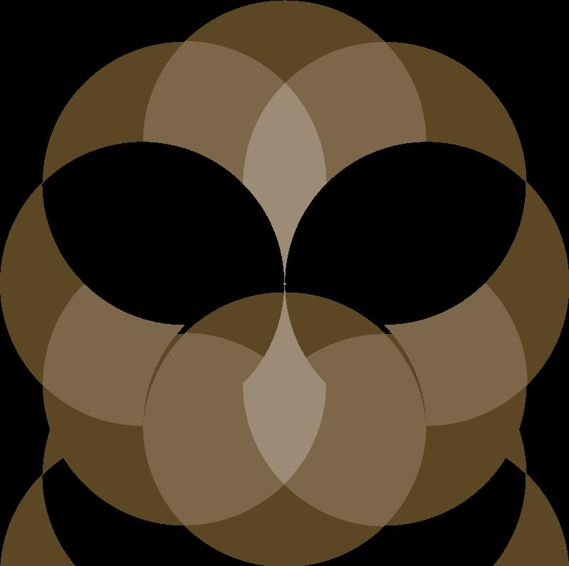 Rakdok Logo