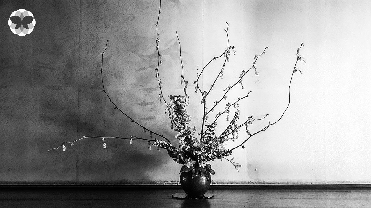 อิเคบานะ : ศิลปะแห่งการมองความงามของดอกไม้และชีวิต