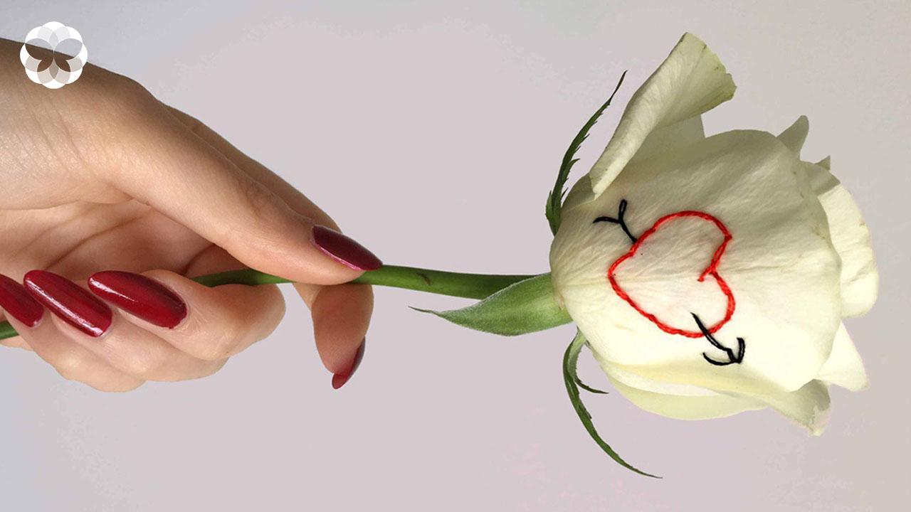 ศาสตร์แห่ง 'การปักคำบนกุหลาบ' เพื่อสื่อถึงภาวะใจช้ำจากความรัก